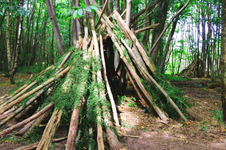 green teepee wooden den in natural woodland